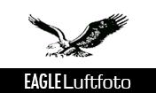 Eagle Luft Foto